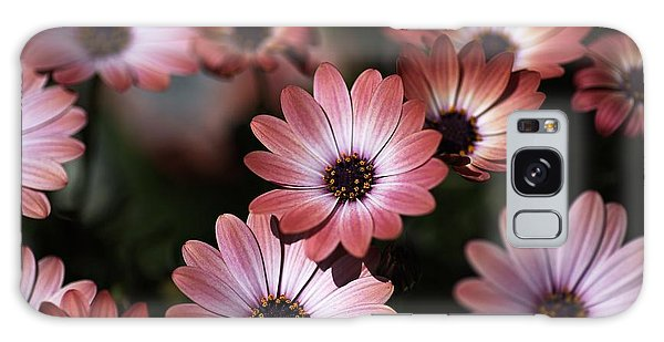 African Daisy Zion Red Galaxy Case by Joy Watson