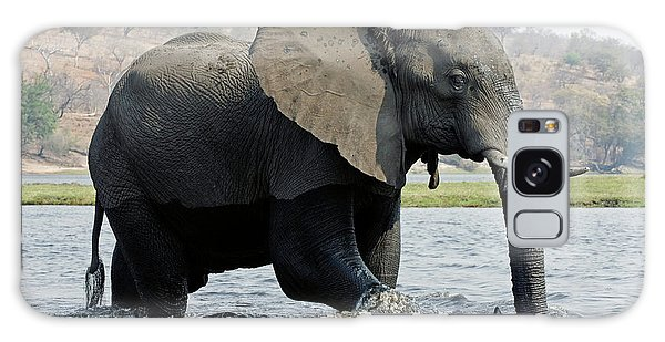 African Elephant - Bathing Galaxy Case