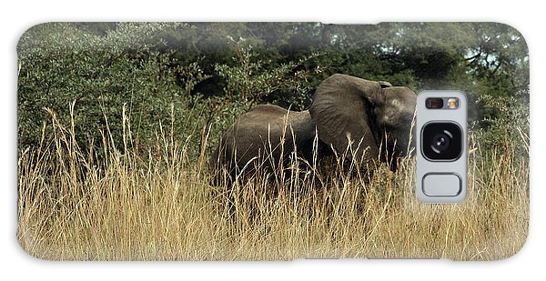 African Elephant In Tall Grass Galaxy Case