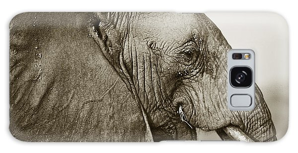 African Elephant Profile  Duotoned Galaxy Case by Liz Leyden