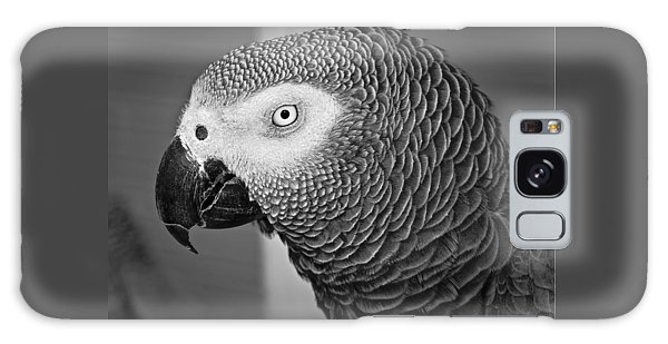 African Grey Parrot Galaxy Case