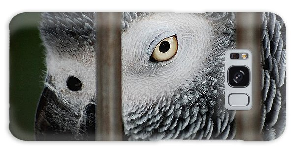African Grey Galaxy Case by Robert Meanor