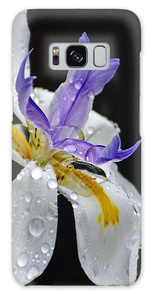 African Iris Galaxy Case by Holly Kempe