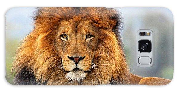 African Lion 1 Galaxy Case