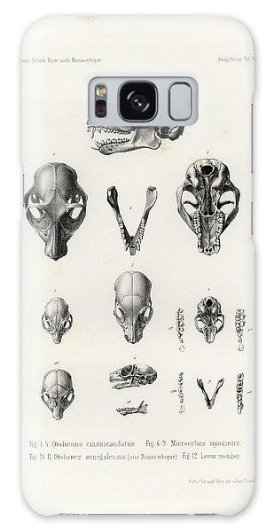 African Mammal Skulls Galaxy Case
