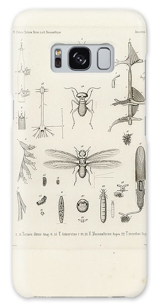 African Termites And Their Anatomy Galaxy Case by W Wagenschieber