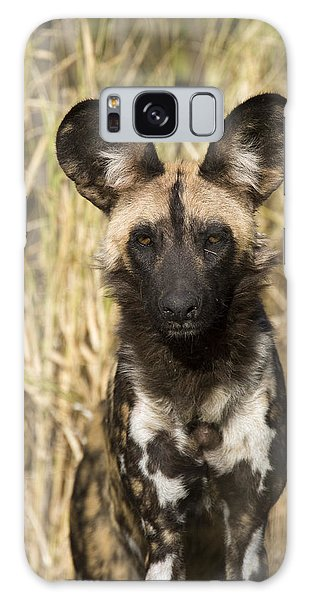 Galaxy Case featuring the photograph African Wild Dog Okavango Delta Botswana by Suzi Eszterhas