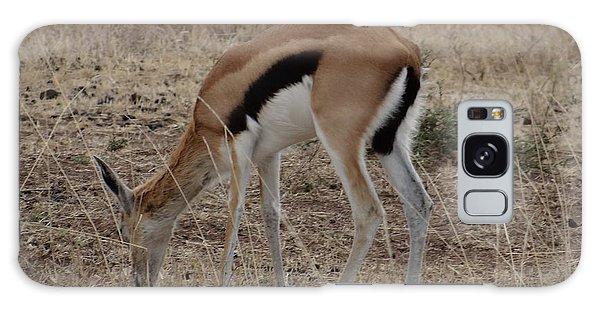 African Wildlife 4 Galaxy Case