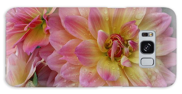 After The Rain - Dahlias Galaxy Case by Dora Sofia Caputo Photographic Art and Design