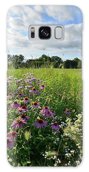 Afternoon In Moraine Hills State Park Galaxy Case