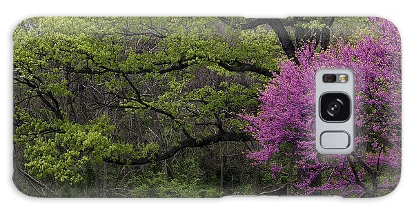Afton Virginia Spring Red Bud Galaxy Case