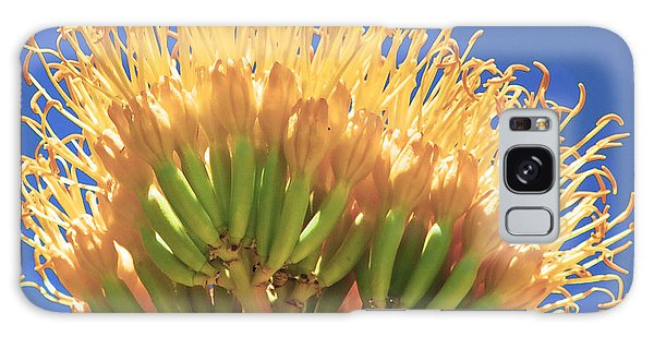 Agave Bloom Galaxy Case by Donna Greene