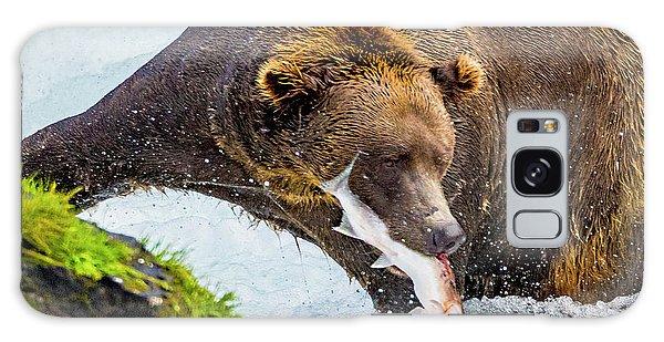 Alaska Brown Bear Galaxy Case
