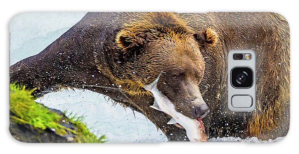 Alaska Brown Bear Galaxy Case