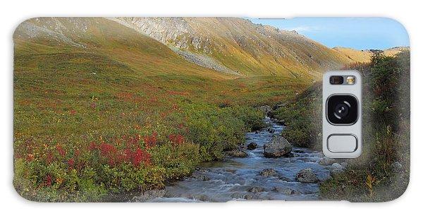 Alaska Fireweed And Willow Creek Along Hatcher Pass Road Galaxy Case