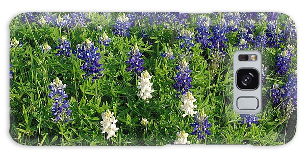 Albino And Bluebonnet Field Galaxy Case by Robyn Stacey