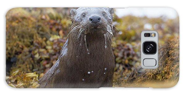 Alert Female Otter Galaxy Case