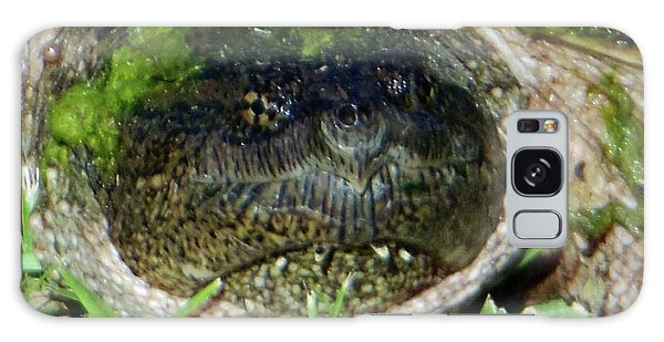 Algae Face Common Snapper Galaxy Case