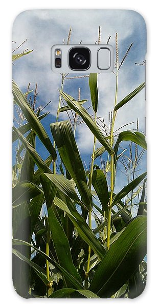 All About Corn Galaxy Case