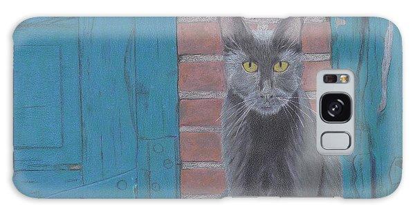 Alley Cat Galaxy Case