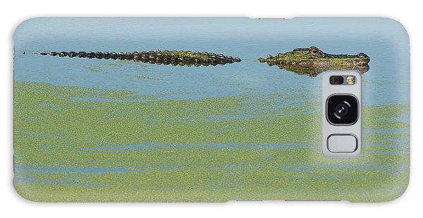 Alligator  Galaxy Case by Carolyn Dalessandro