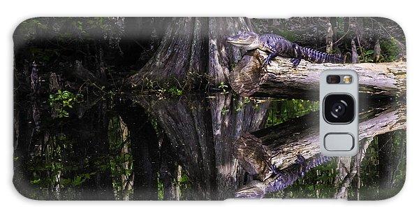 Alligators The Hunt, New Orleans, Louisiana Galaxy Case