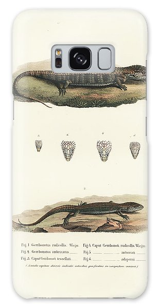 Alligator Lizards From Mexico Galaxy Case