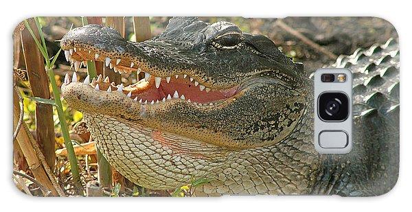 Alligator Showing Its Teeth Galaxy Case
