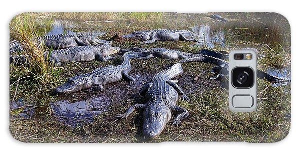 Alligators 280 Galaxy Case