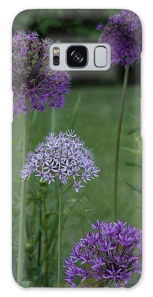 Allium Galaxy Case