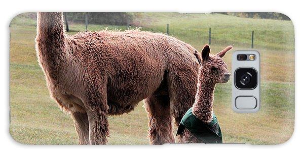 Alpaca And Cria Galaxy Case