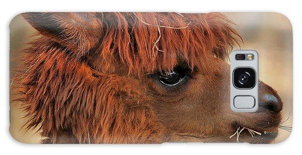 Alpaca Portrait Galaxy Case
