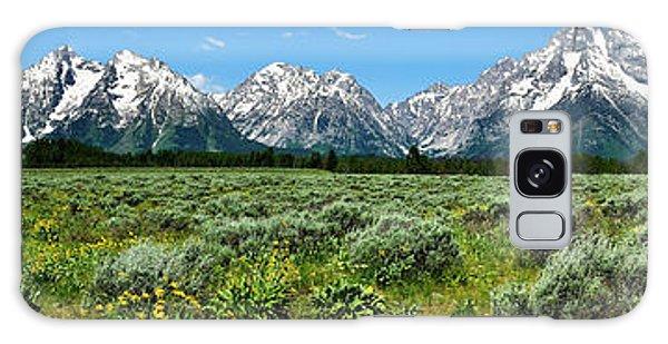 Alpine Meadow Teton Panorama II Galaxy Case