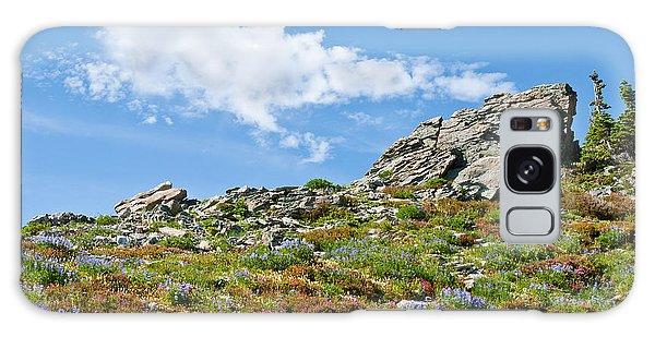 Alpine Rock Garden Galaxy Case