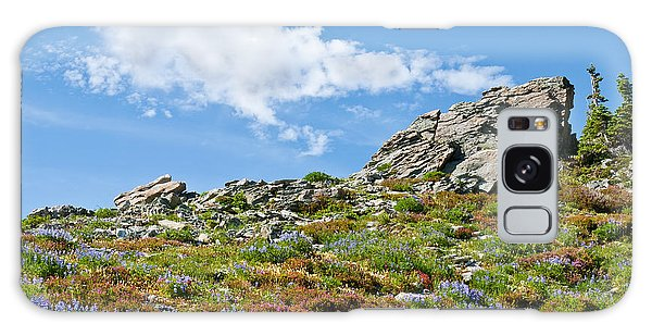 Alpine Rock Garden Galaxy Case by Jeff Goulden