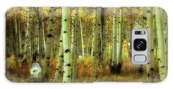 Alvarado Autumn 1 Galaxy Case