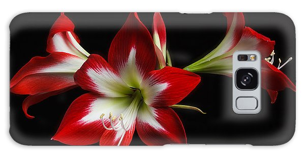 Amaryllis 'quito' Galaxy Case