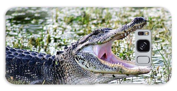 American Alligator Florida 3314_2 Galaxy Case