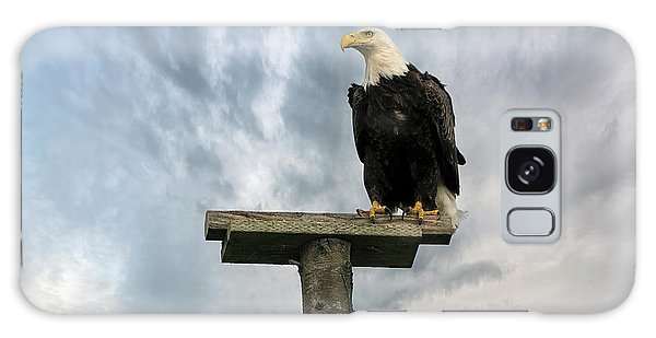 Galaxy Case - American Bald Eagle Perched On A Pole by David Gn