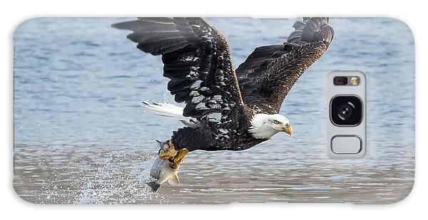American Bald Eagle Taking Off Galaxy Case