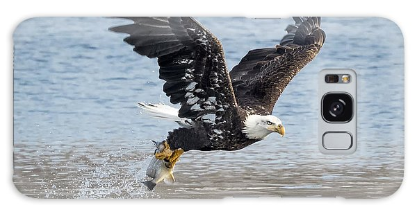 American Bald Eagle Taking Off Galaxy Case