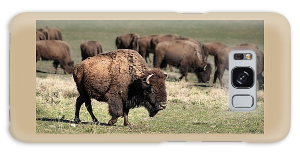 Galaxy Case featuring the photograph American Bison 5 by James Sage