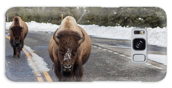 American Bison In Yellowstone National Park Galaxy Case by Carol M Highsmith