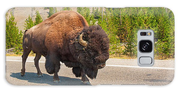 American Bison Sharing The Road In Yellowstone Galaxy Case by John M Bailey