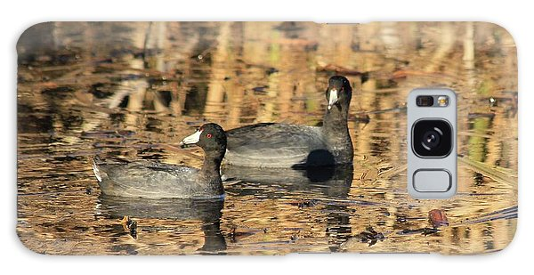 American Coots Galaxy Case by Jerry Battle