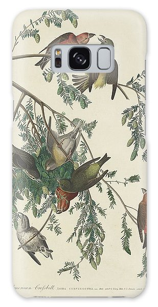 American Crossbill Galaxy Case by Rob Dreyer