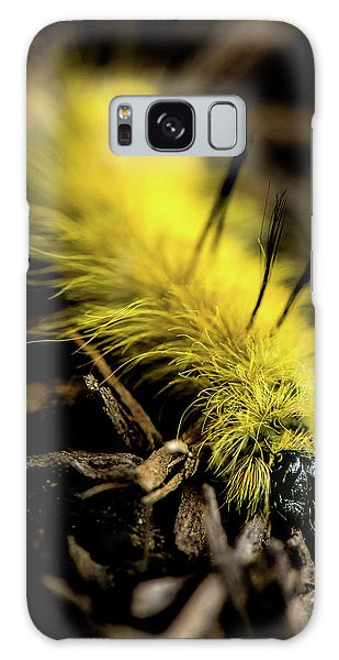 American Dagger Moth Caterpillar Galaxy Case