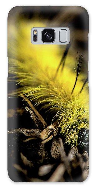 American Dagger Moth Caterpillar Galaxy Case