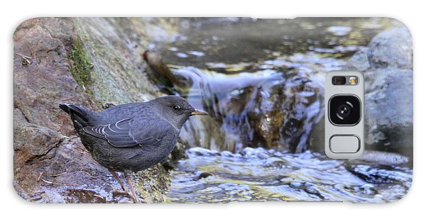 American Dipper Galaxy Case by Angie Vogel