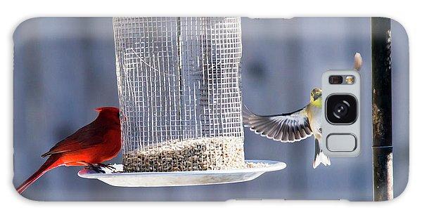 American Goldfinch Inbound Galaxy Case